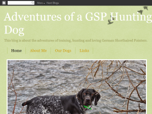 Adventures of a GSP Hunting Dog Web Domain Authority Directory