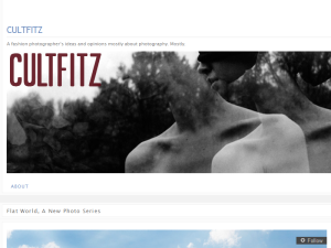 CultFitz Web Domain Authority Directory