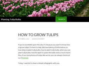 Planting Tulip Bulbs Web Domain Authority Directory