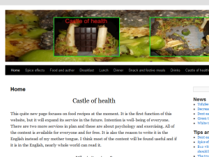 Castle of health Web Domain Authority Directory