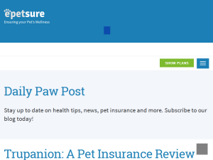 Daily Paw Post Web Domain Authority Directory