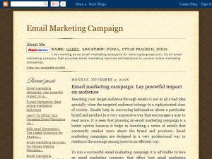 Email marketing campaign: Take Profit of Mass Appeal Web Domain Authority Directory
