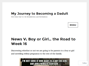 My Journey to becoming a Dadult Web Domain Authority Directory