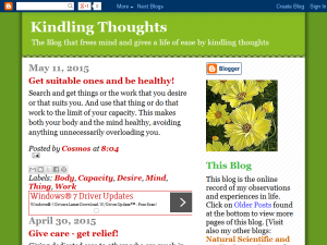 Kindling Thoughts Web Domain Authority Directory