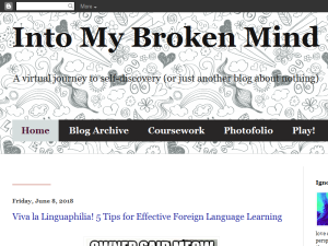 Into My Broken Mind Web Domain Authority Directory