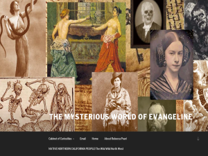 The Mysterious World of Evangeline Web Domain Authority Directory