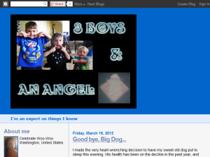 2 boys & an angel Web Domain Authority Directory